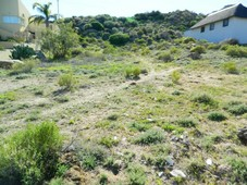 1315 m land available in springbok